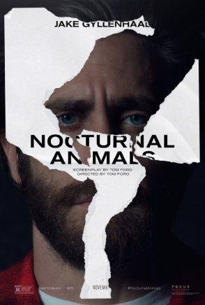 nocturnal animals gyllenhaal.jpg